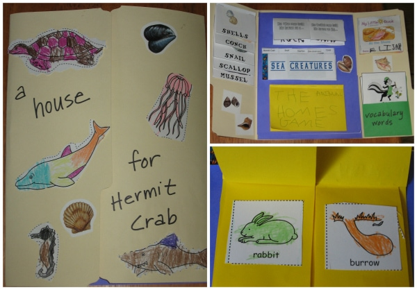 A House for Hermit Crab Lapbook
