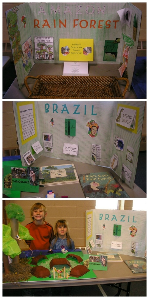 Brazil Geography Display