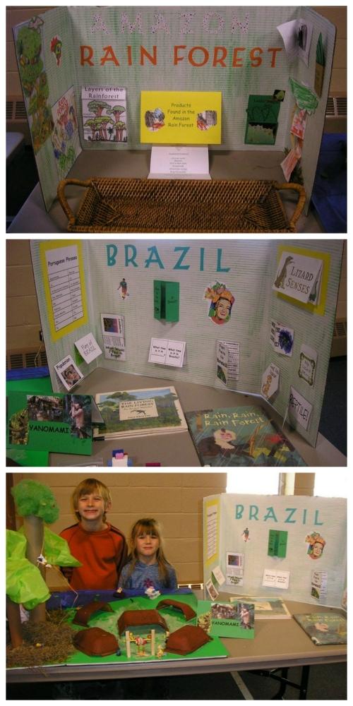 Brazil Geography Display