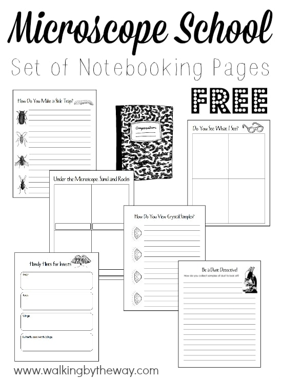 Free Set of 28 Notebooking Pages for Learning about Microscopes from Walking by the Way