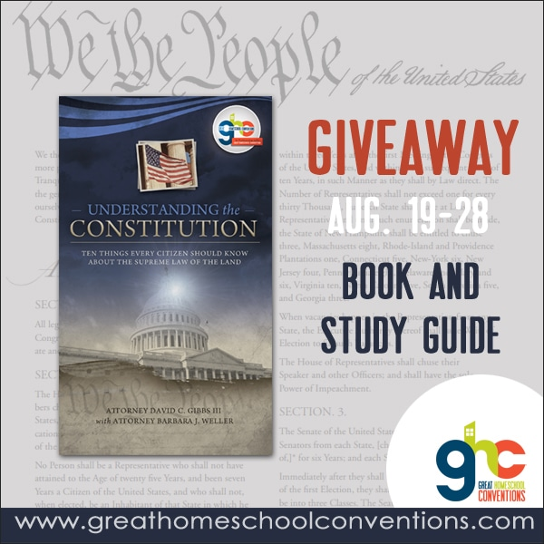 Understanding the Constitution eBook