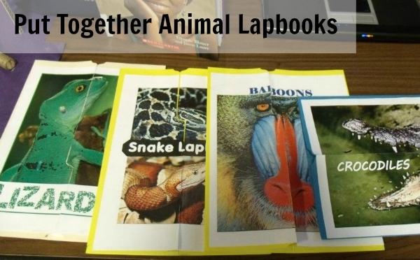 Study Animals and Complete Lapbooks for Your Geography Fair Project
