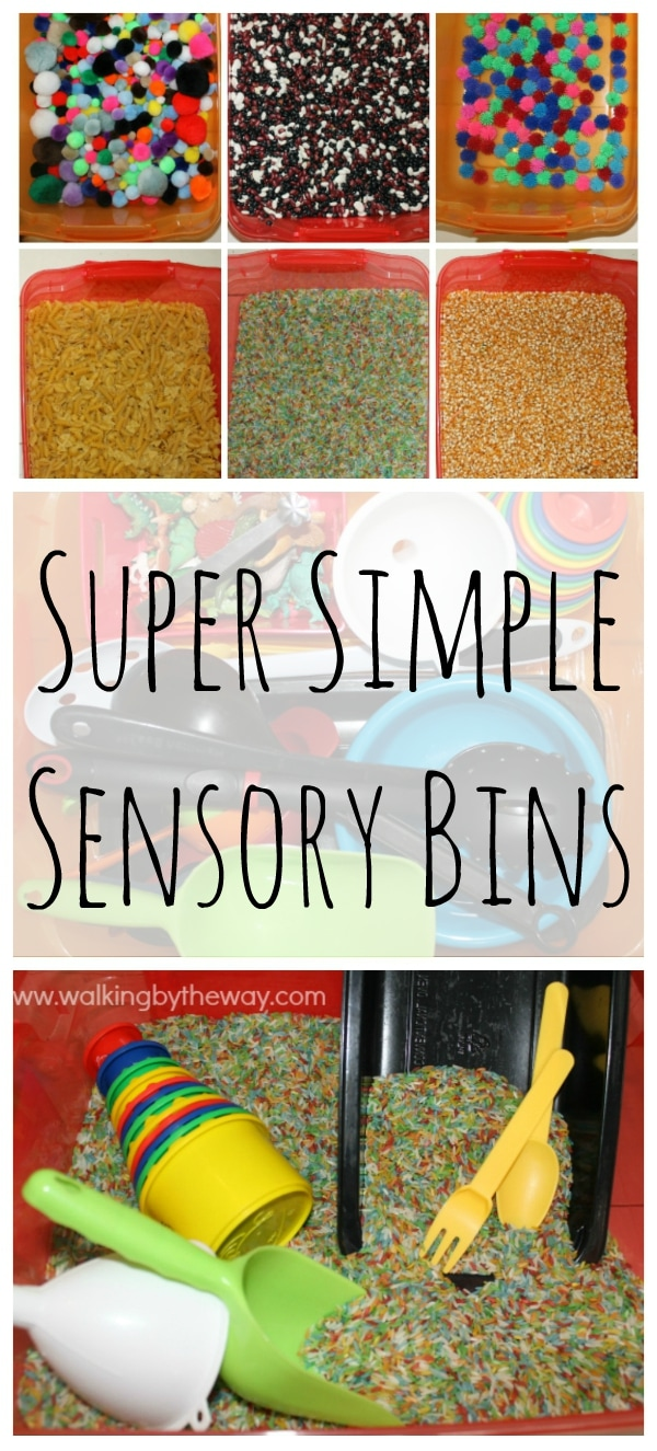 Super Simple Sensory Bins from Walking by the Way