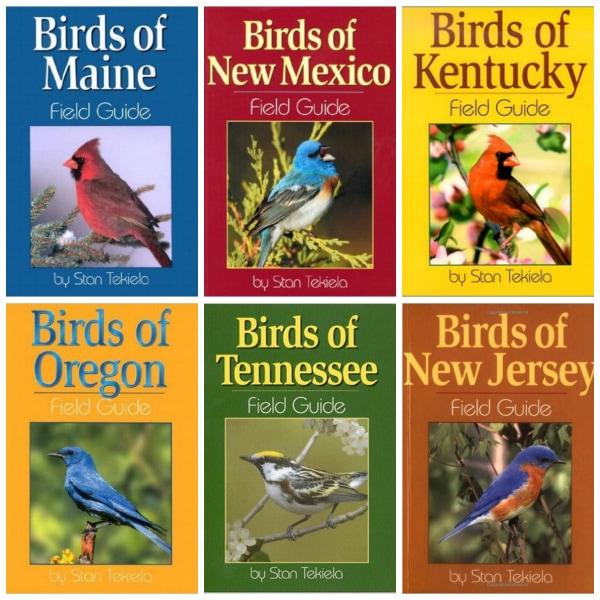 Best Birding Books (color-coded) for Children