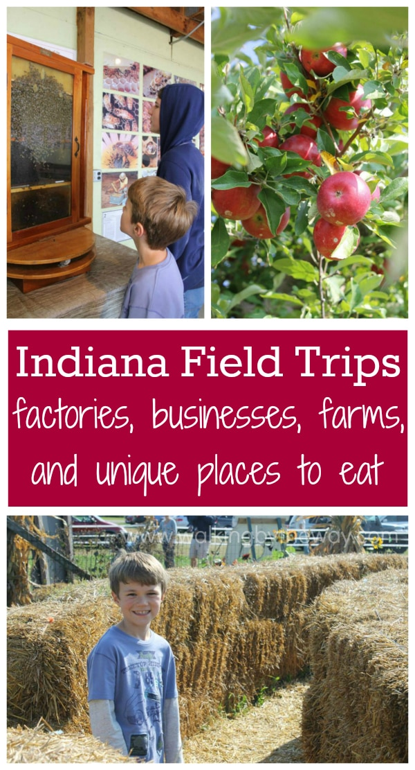 Indiana Field Trip Ideas: factory tours, business tours, farms, orchards, and unique places to eat! from Walking by the Way