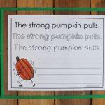 Pumpkin Sentences Copywork and Parts of Speech